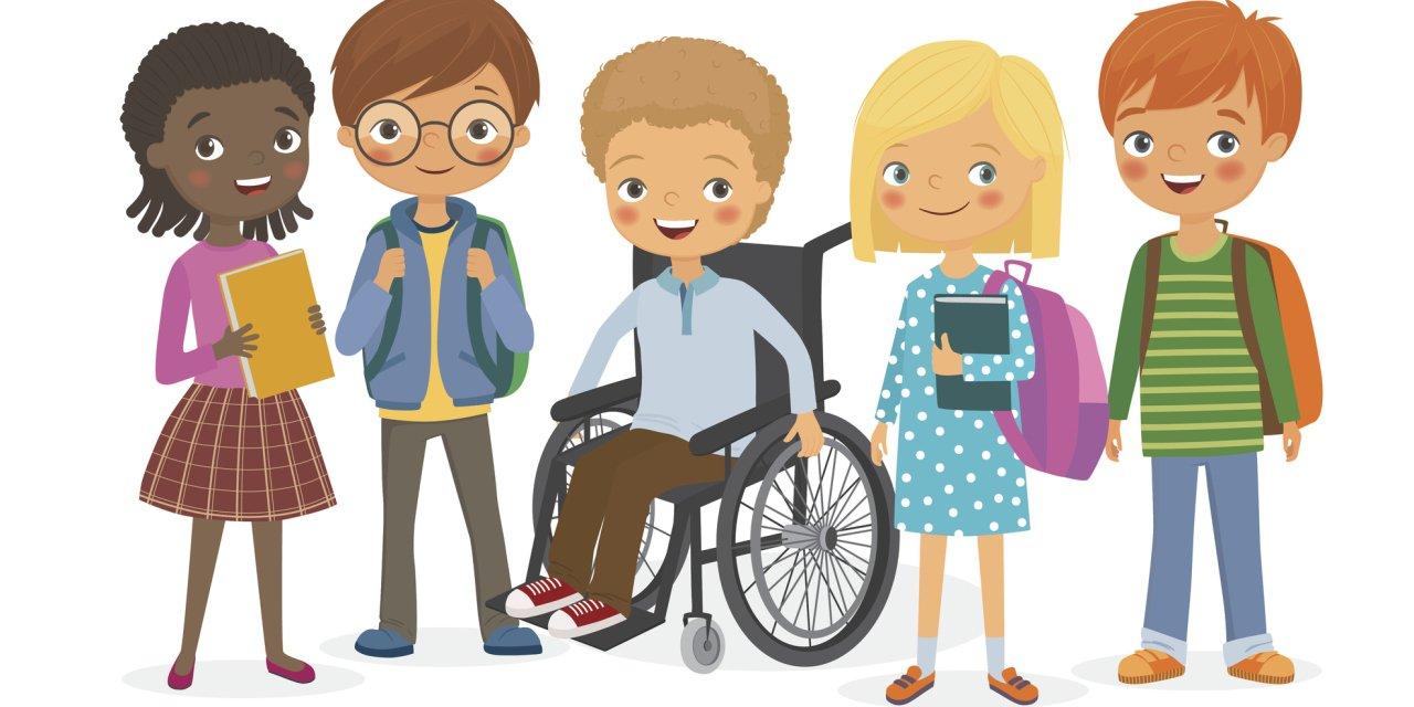 Организация обучения детей с ОВЗ и детей инвалидов в образовательной организации
